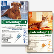 Advantage II Flea Control